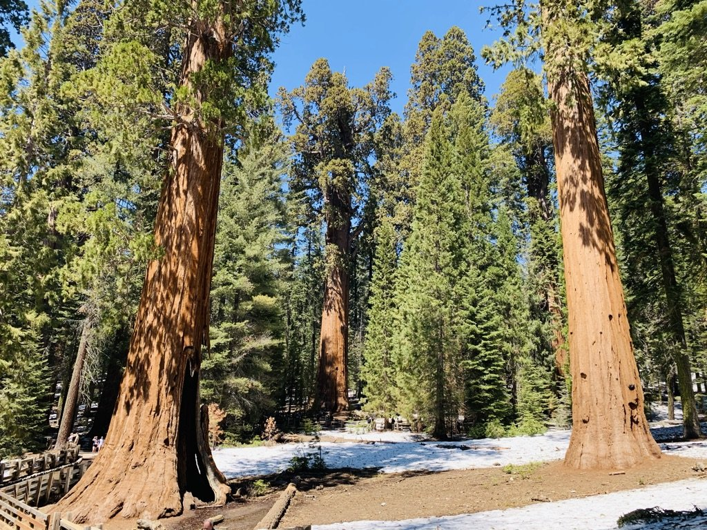 places to travel in california